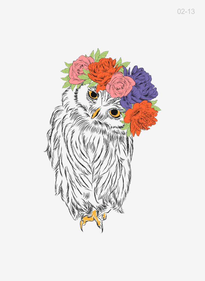 Открытки совы с цветами, картинках фото картинки